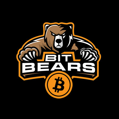 BITBEARS.COM Premium BITCOIN BRANDABLE Domain - Animal Names are Hot - CRYPTO 4