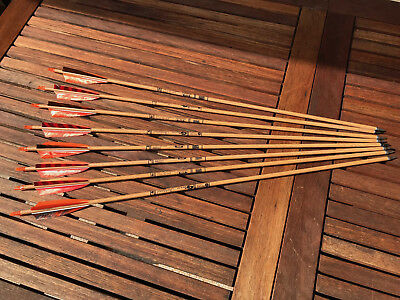 8x (+1) Gold Tip Traditional Hunter 1535/600