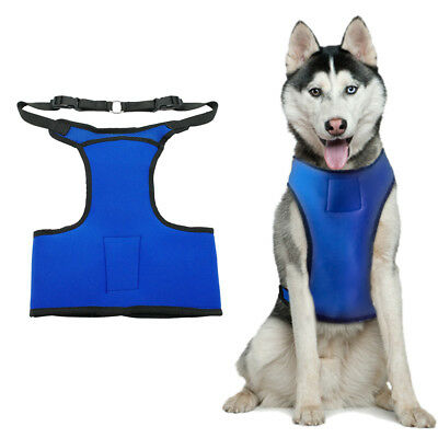 Cooling Dog Harness with Gel Pack Medium Blue Pet Vest Cooler for Summer Bulldog