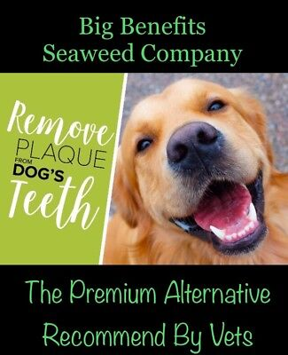 420g Clean PlaqueOff Natures Big Benefits Seaweed Great Supplement Dogs FREE P&P