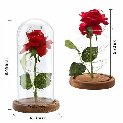 LED Red Rose in Glass Dome Home Decor Beauty and the Beast - Enchanted