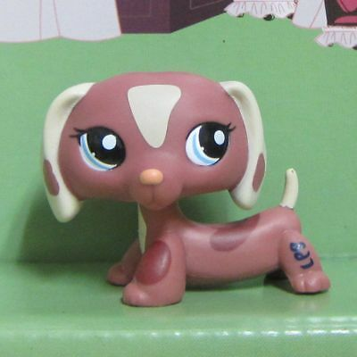 Littlest Pet Shop Collection LPS Toys #1631 Dachshund Dog Figure Toy B2