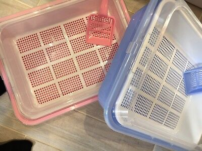 Clever Sieve Litter Tray For Wood Pellets Cat/Kitten Tray .....Blue out of stock