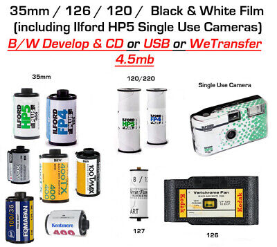 35mm Black & White FILM DEVELOPING and CD or USB - 4.5mb Picture Size