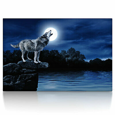 heulender wolf poster oder leinwand bild auf keilrahmen wandbild mondschein eur 9 90. Black Bedroom Furniture Sets. Home Design Ideas