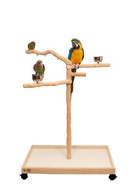 Perfect Tree for Parrots - A Comfortable Climbing Tree for Most Parrots Species