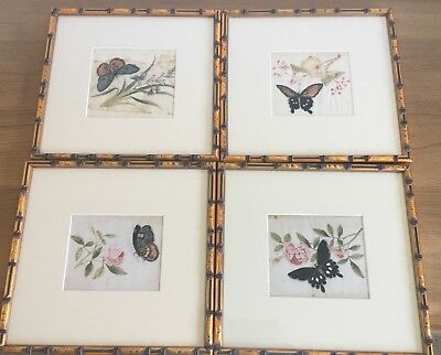 Set Of 4 Chinese pith or rice paper painting of Butterflies Framed