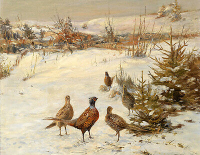 """Stunning oil painting animal birds in landscape no framed free shipping cost 36"""""""