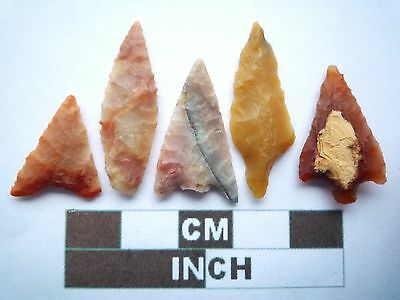 Neolithic Arrowheads x5, High Quality Selection of Styles - 4000BC - (X025)