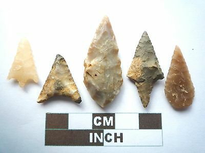 Neolithic Arrowheads x 5, Higher Quality, Genuine Artifacts from 4000BC  (V042)
