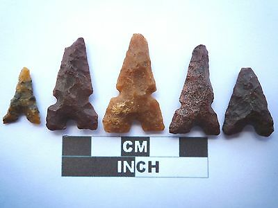 Neolithic Arrowheads x 5, Eiffel / Moroccan Points, Genuine - 4000BC  (T046)