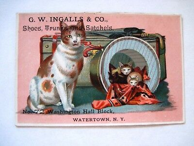 """Victorian Trade Card """"G.W. Ingalls & Co."""" Shoes, Trunks and Satchels w/ Kittens*"""