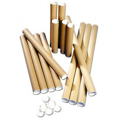 1 Quality Postal Cardboard Tubes + White End Caps 76Mm X 330Mm