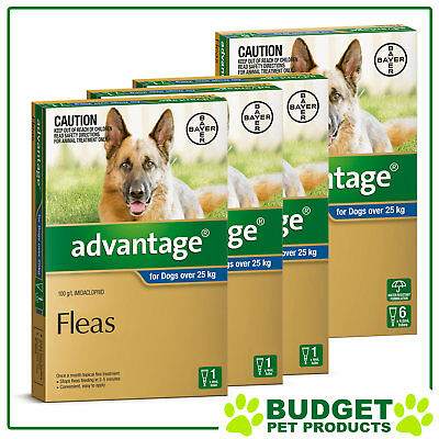 Advantage For Dogs Over 25kg 9 DOSES