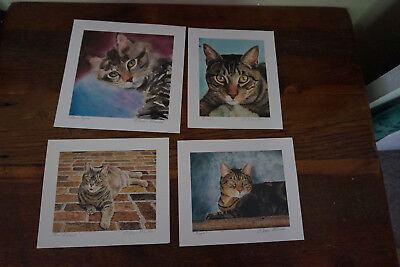 Mini   ART PRINTs BY DREW STROUBLE Cat Art Signed Beautiful  lot of 16