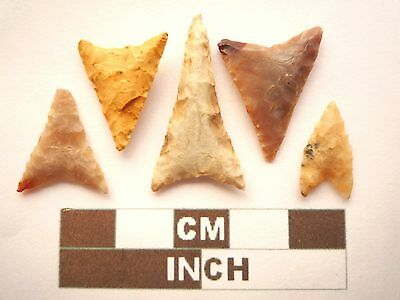 Neolithic Arrowheads, 5 x Triangle Style Artifacts - 4000BC - (Z060)