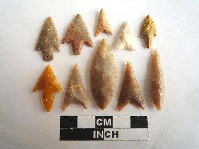 Neolithic Arrowheads x 10, High Quality Selection of Styles - 4000BC - (2138)