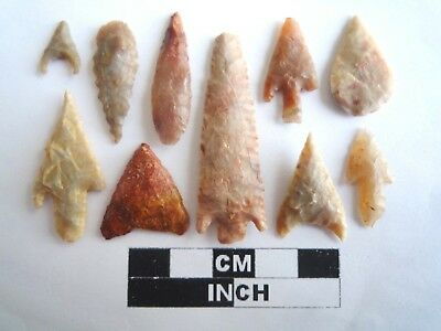 Neolithic Arrowheads x 10, High Quality Selection of Styles - 4000BC - (2121)