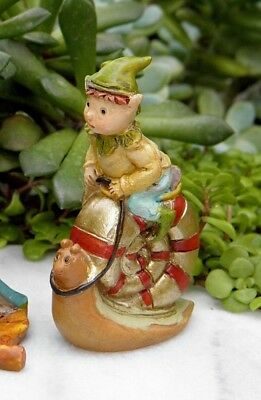 Miniature Dollhouse FAIRY GARDEN ~ Pixie ENCHANTED FOREST Riding Snail