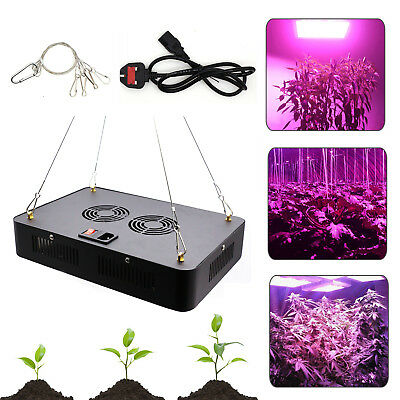 600W LED Grow Light Panel Full Spectrum Hydroponic Indoor Plant Veg Bloom Lamps