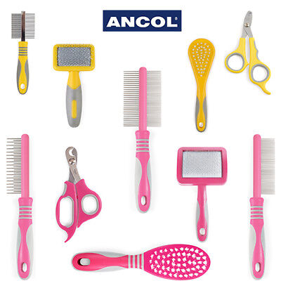 Ancol Cat Small Animal Grooming Tool Slicker Brush Comb Nail Clipper Moulting