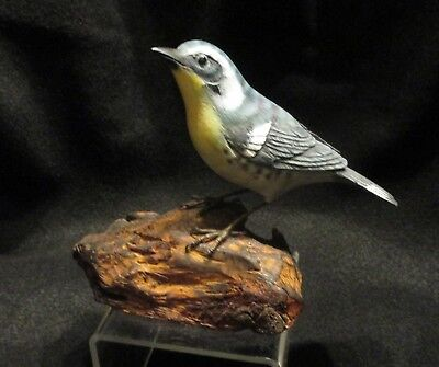 Hand Carved & Painted Wood Yellow Throated Warbler