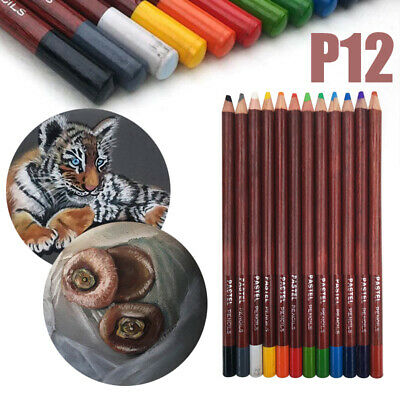 12Pcs Colors Professional Soft Pastel Pencil Set Painting Scenery Drawing Kit