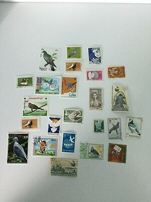 Pigeon, Fancy Pigeons and Dove Stamps Qty 24