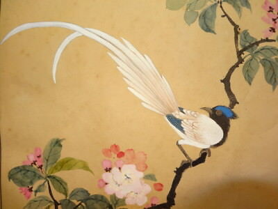 """Vintage SIGNED JAPANESE Watercolor ART Painting """"Bird and Flower""""  17.5"""" X 14"""""""