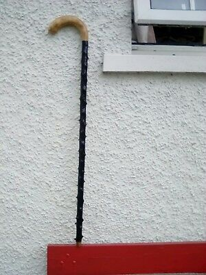 Irish Blackthorn Walking Stick From Donegal