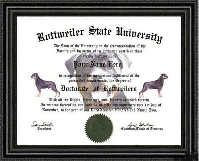 Rottweiler Lover's Doctorate Diploma / Degree Custom made & Designed for you