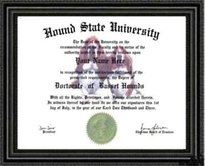 Basset Hound Lover's Doctorate Diploma / Degree Custom made & Designed for You