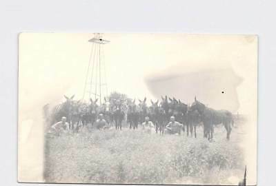 Rppc Real Photo Postcard Farmers In Field With Donkeys Windmill In Background