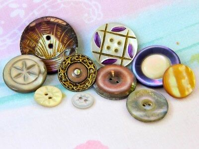 ...lot Of 10   Antique Victorian  Carved Dyed Shell Buttons...1 Set In Metal
