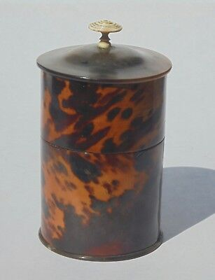 Rare Antique Tortoiseshell Tea Caddy Cannister