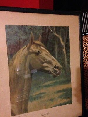 Vintage  Race Horse Man O War George Ford Morris signed  NYC 1944