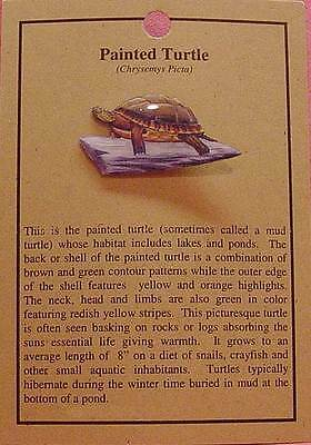 Painted Turtle  Hat Pin Lapel Pins  Free Ship