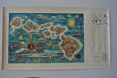 1950 Dole Pineapple Hawaiian Islands Vintage Map, Original Joseph Feher