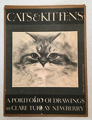 CATS AND KITTENS (1956), A PORTFOLIO OF DRAWINGS by Clare Turley Newberry