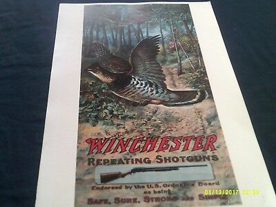 Repro Poster-Winchester Repeating Shotguns-Safe, Sure, Strong & Simple