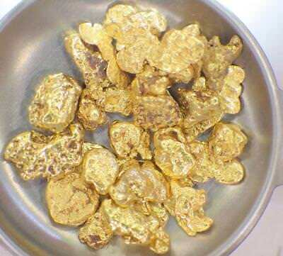 GOLD NUGGETS 10.077 GRAMS Placer Alaska Natural .3239 T Oz #6 Screen High Purity