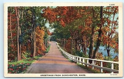 Old Country Road Greetings from Dorchester Massachusetts MA Vintage Postcard B25