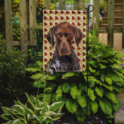 German Shorthaired Pointer Fall Leaves Portrait Flag Garden Size