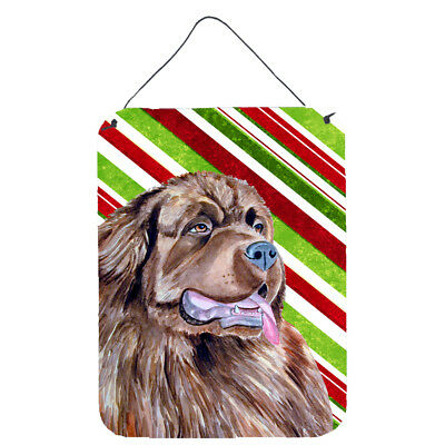 Newfoundland Candy Cane Holiday Christmas Wall or Door Hanging Prints