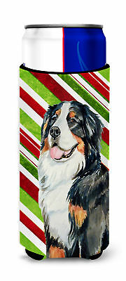 Bernese Mountain Dog Candy Cane Holiday Christmas Ultra Beverage Insulators for