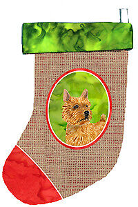 Carolines Treasures  SS2061-CS Norwich Terrier Christmas Stocking SS2061