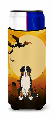 Halloween Bernese Mountain Dog Michelob Ultra Hugger for slim cans