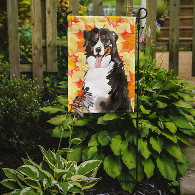 Carolines Treasures  CK1852GF Fall Leaves Bernese Mountain Dog Flag Garden Size