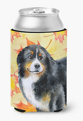 Carolines Treasures  BB9906CC Bernese Mountain Dog Fall Can or Bottle Hugger