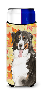 Fall Leaves Bernese Mountain Dog Michelob Ultra Hugger for slim cans